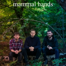 YM - Website - Artist Squares(mammal hands)
